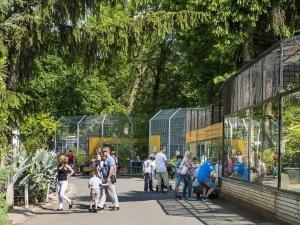 Nyíregyháza Állatpark 04