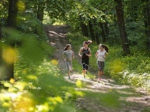 Nyíregyháza Sóstói-erdő 01
