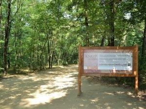 Nyíregyháza Sóstói-erdő 09