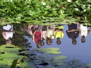tuzson-janos-botanikus-kert-09